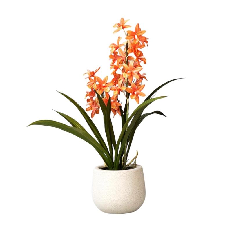 Maceta orquidea naranja